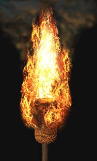 Torch_fire